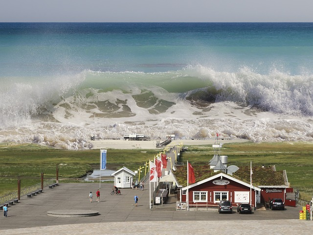 Tsunami Survival Tips